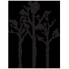 logosmalldark